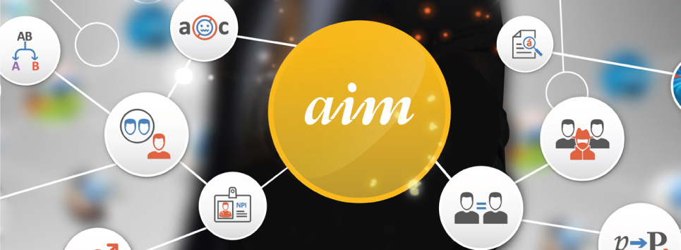 Aim-Smart Data Quality Software | Matching, Parsing